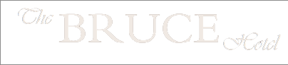 The Bruce Hotel logo