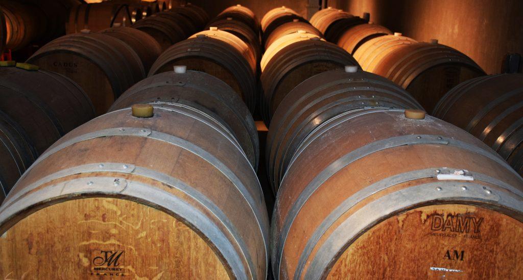 barrels lined up