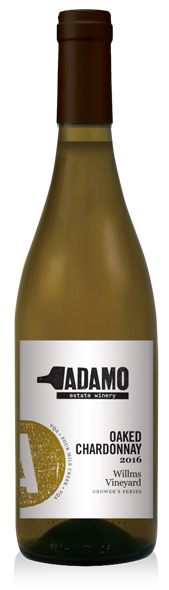2016 Willms Oaked Chardonnay at Adamo Estate Winery