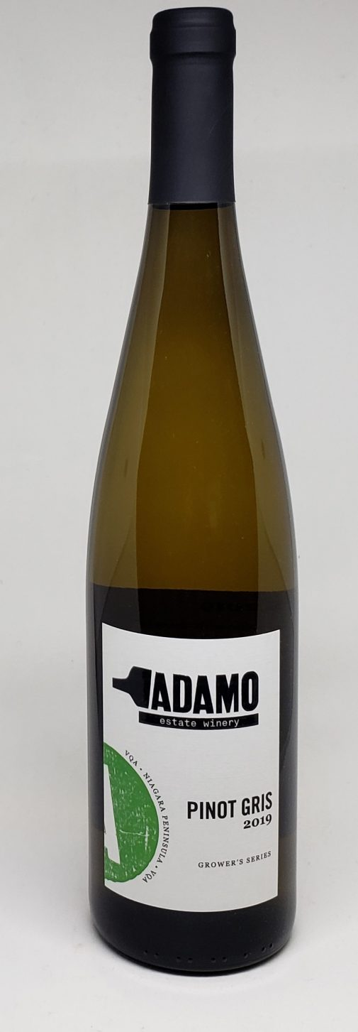 2019 pinot gris wine at Adamo Estate Winery